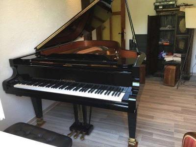 Piano à queue  C. BECHSTEIN 192